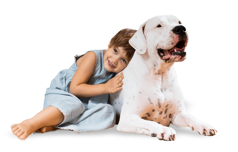 Dog training being good with kids